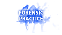 Click here to learn about Dr. Werner's forensic Practice